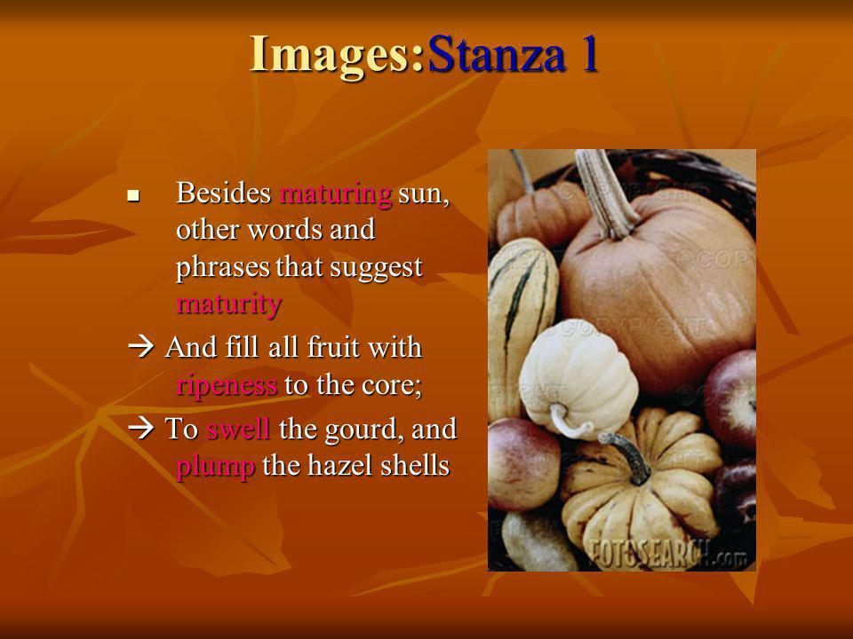 Images:Stanza 1 Besides maturing sun, other words and phrases that suggest maturity.  And fill all fruit with ripeness to the core;