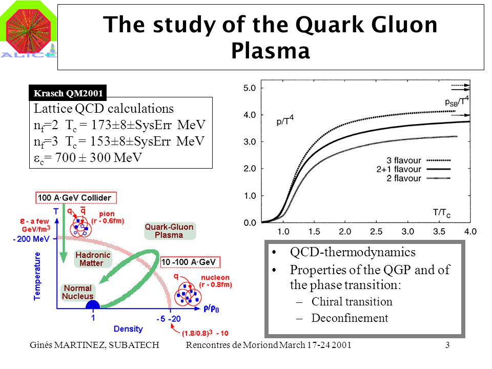 The study of the Quark Gluon Plasma