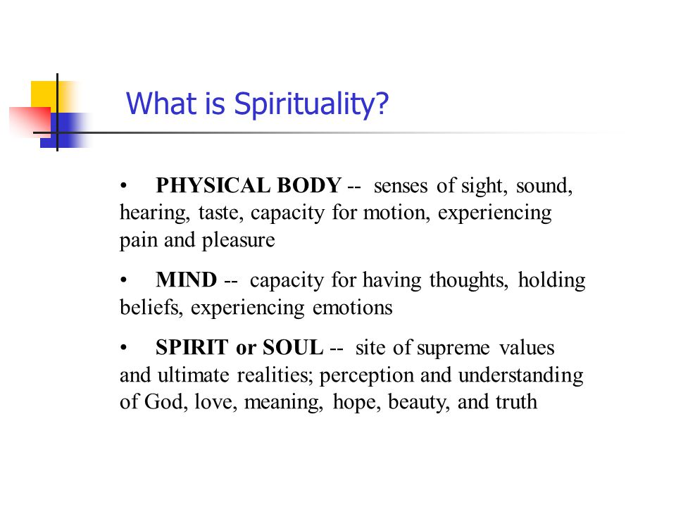 What is Spirituality PHYSICAL BODY -- senses of sight, sound, hearing, taste, capacity for motion, experiencing pain and pleasure.