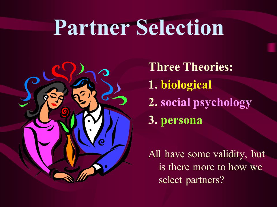 Partner Selection Three Theories: 1. biological 2. social psychology