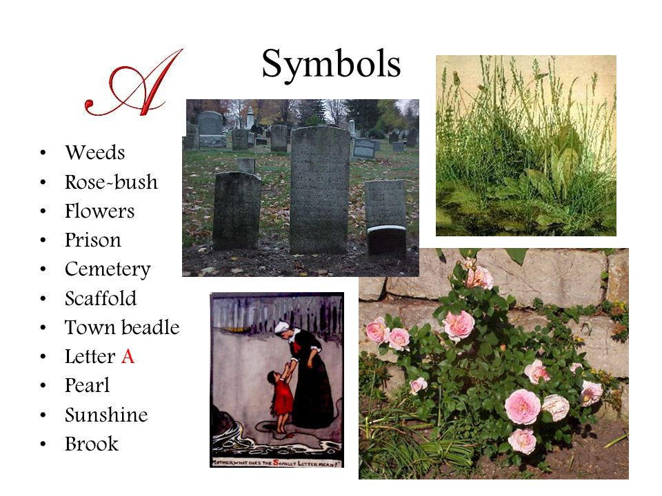 Symbols Weeds Rose-bush Flowers Prison Cemetery Scaffold Town beadle