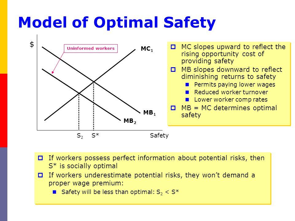 Model of Optimal Safety