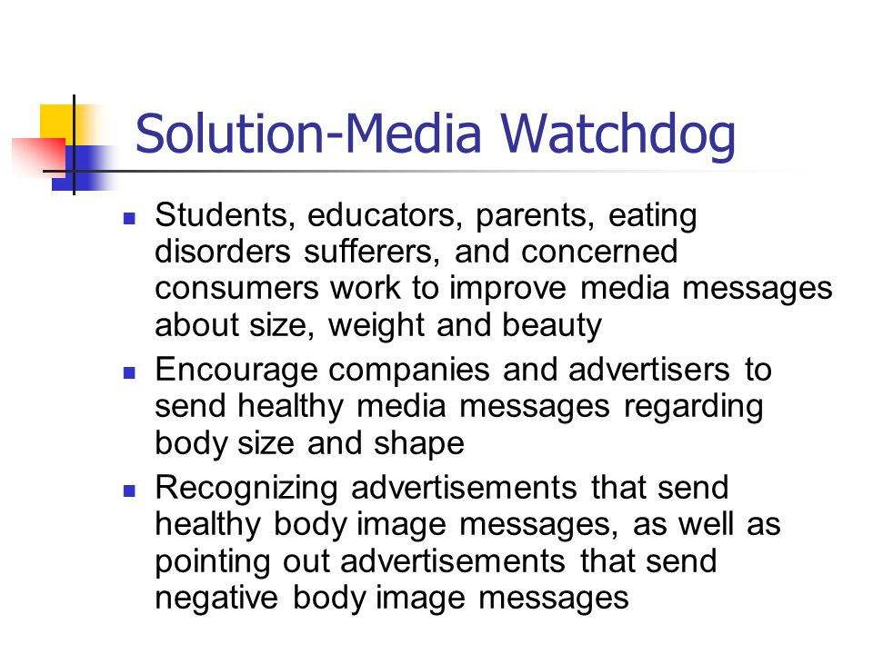 Solution-Media Watchdog
