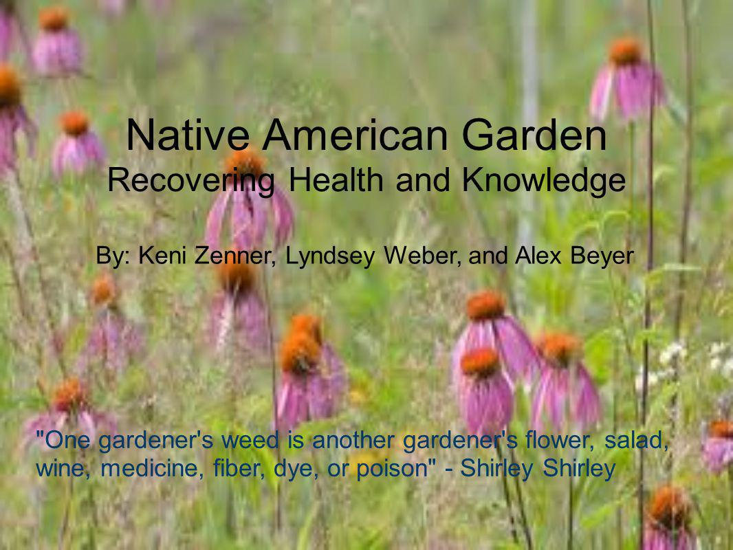 Native American Garden Recovering Health and Knowledge