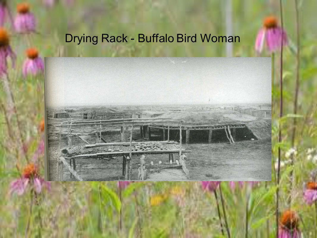 Drying Rack - Buffalo Bird Woman