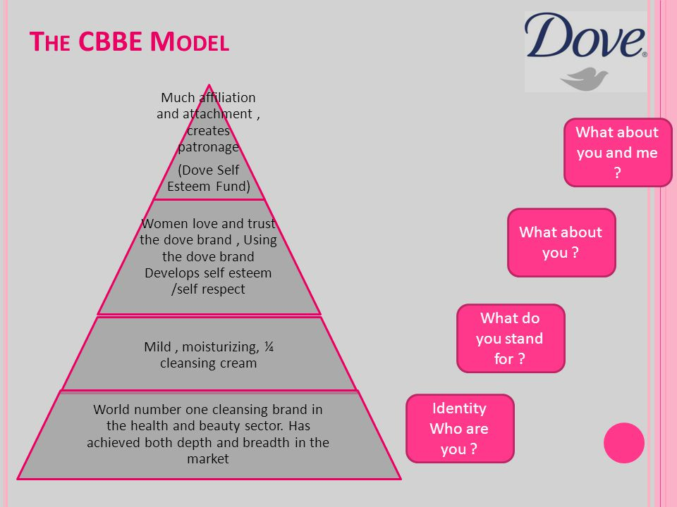 The CBBE Model What about you and me What about you
