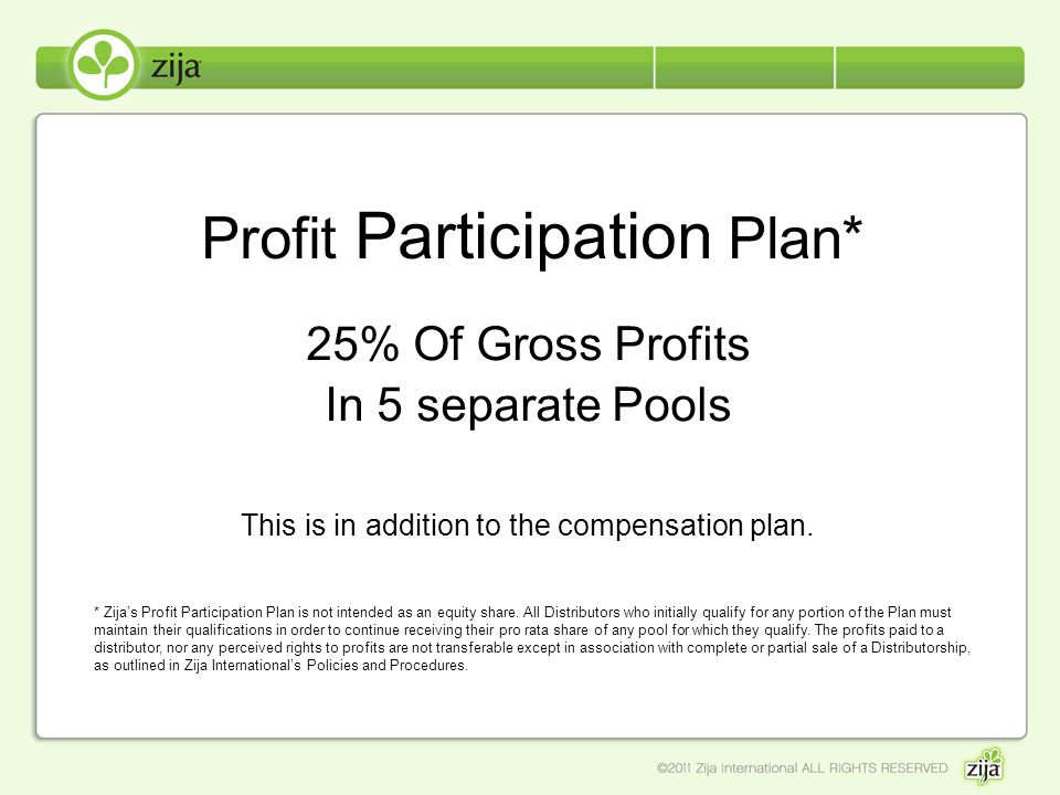 Profit Participation Plan*
