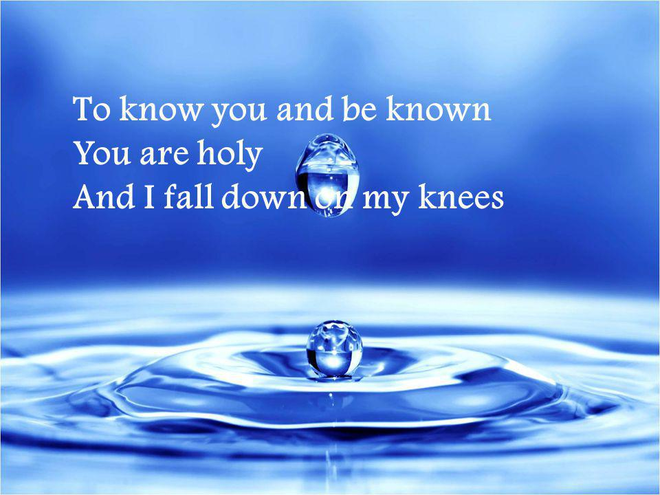 To know you and be known You are holy And I fall down on my knees