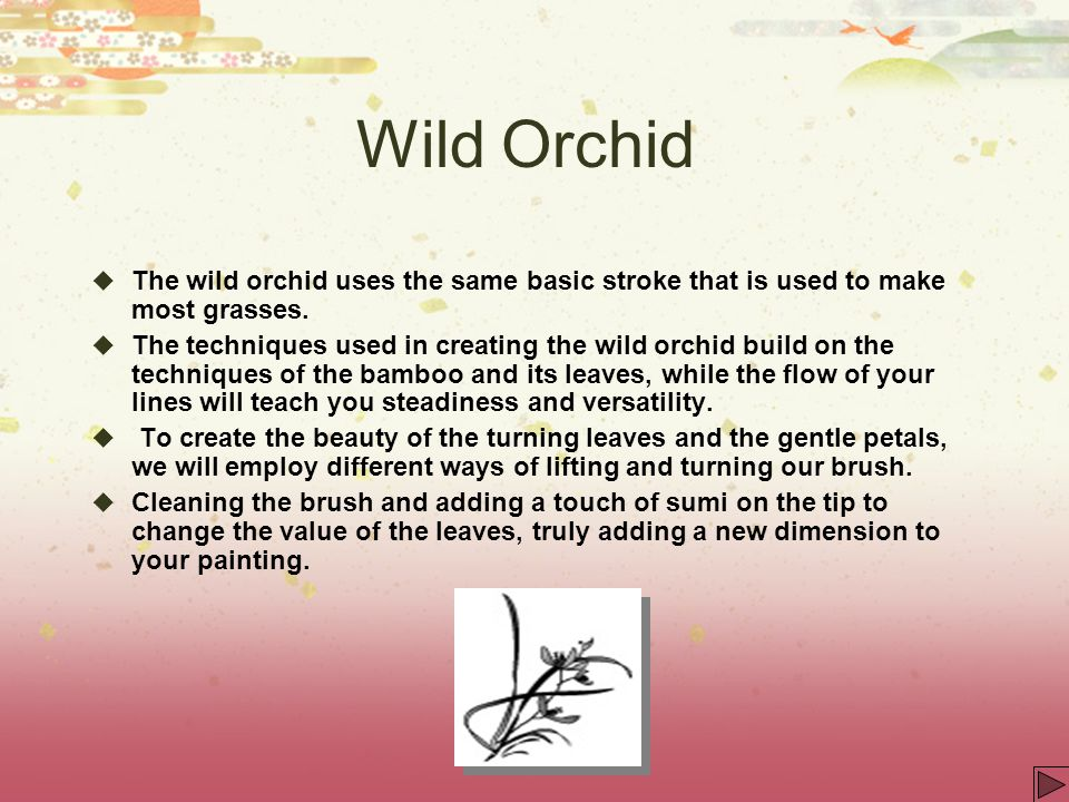 Wild Orchid The wild orchid uses the same basic stroke that is used to make most grasses.
