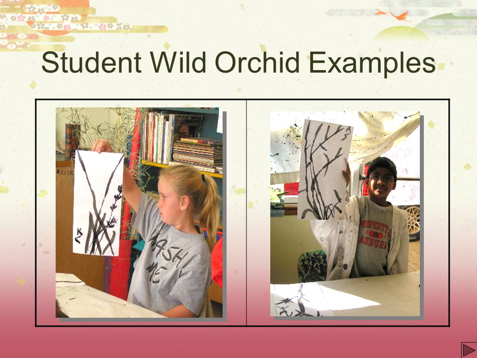 Student Wild Orchid Examples