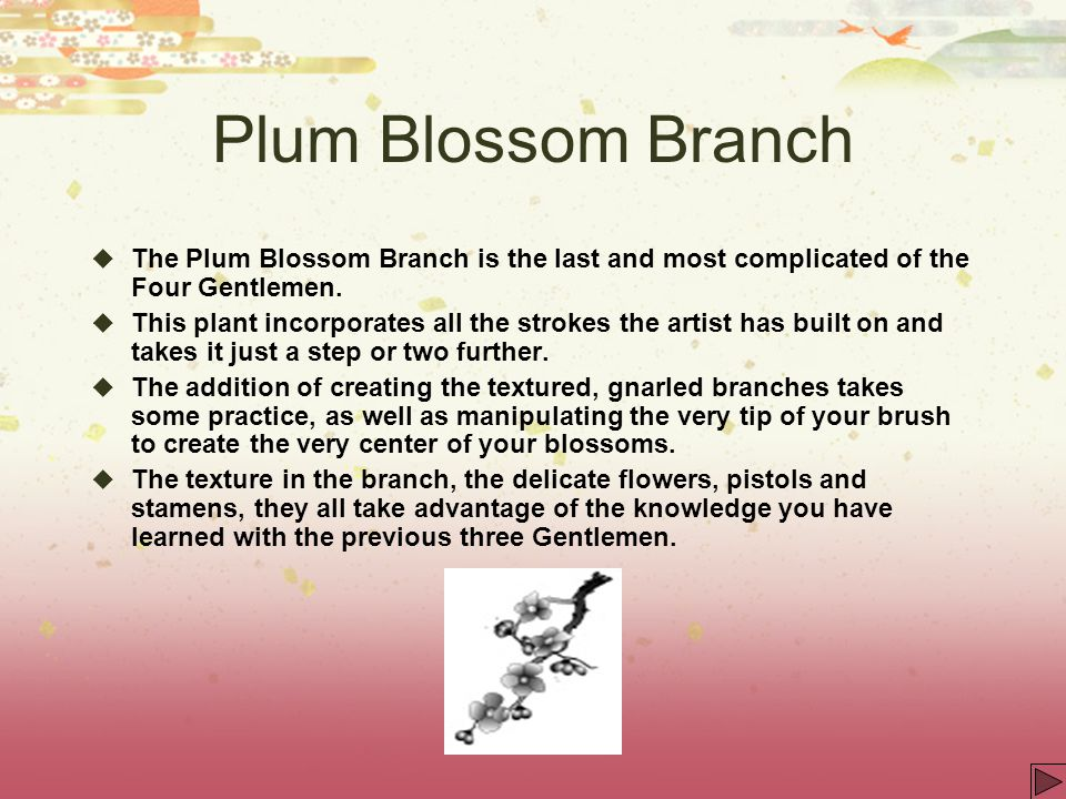 Plum Blossom Branch The Plum Blossom Branch is the last and most complicated of the Four Gentlemen.
