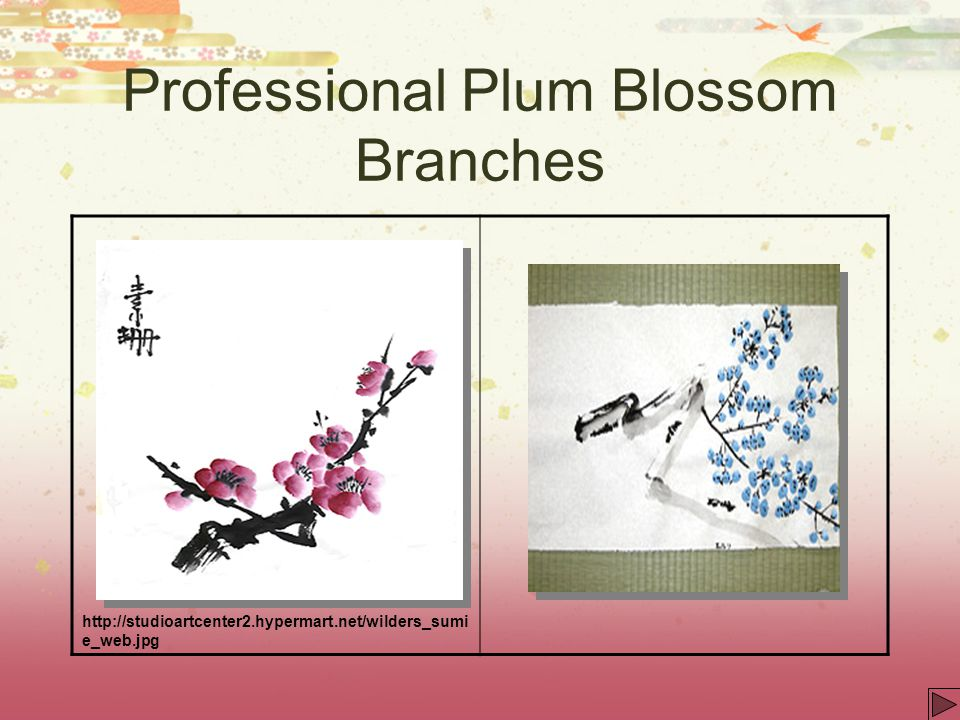 Professional Plum Blossom Branches