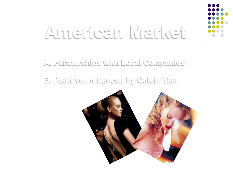 American Market A. Partnerships with Local Companies
