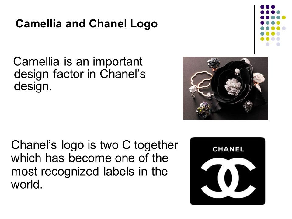 Camellia and Chanel Logo