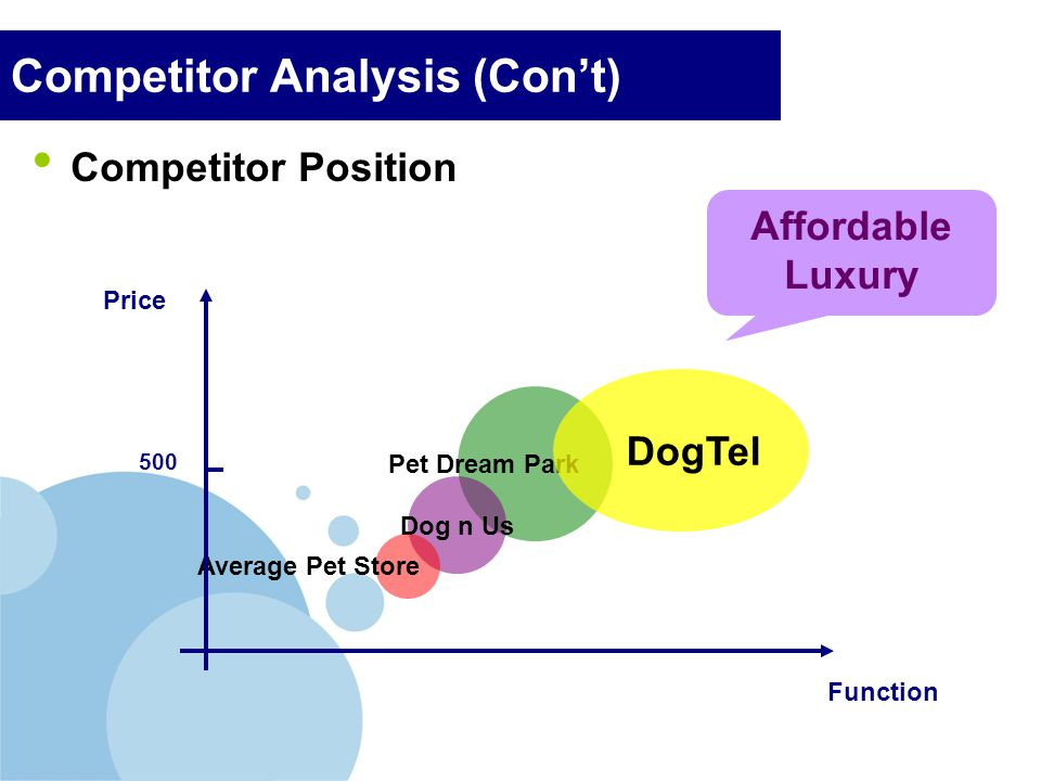 Competitor Analysis (Con't)