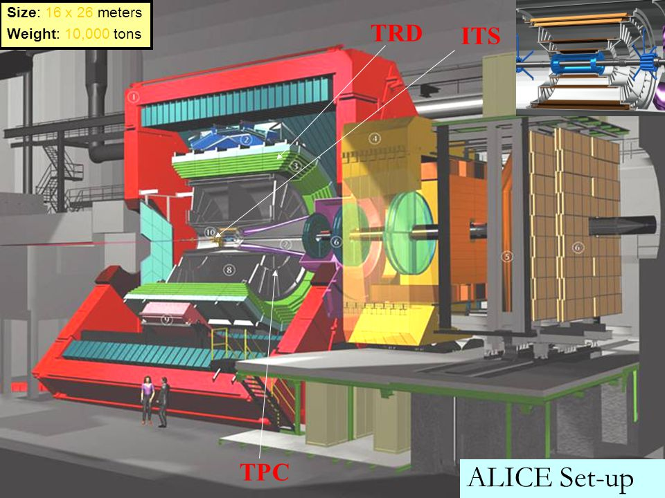 ALICE Set-up TRD ITS TPC Size: 16 x 26 meters Weight: 10,000 tons