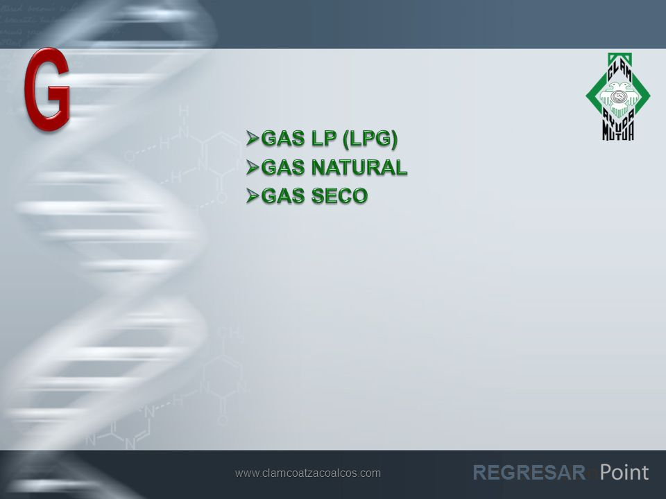 G GAS LP (LPG) GAS NATURAL GAS SECO REGRESAR www.clamcoatzacoalcos.com