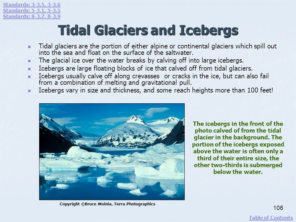 Tidal Glaciers and Icebergs