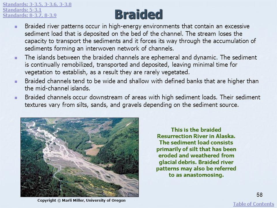 Standards: 3-3.5, 3-3.6, 3-3.8 Standards: 5-3.1. Standards: 8-3.7, 8-3.9. Braided.