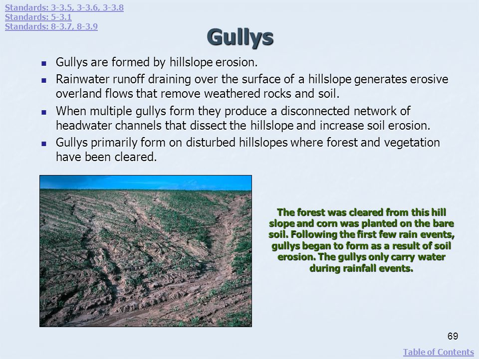 Gullys Gullys are formed by hillslope erosion.