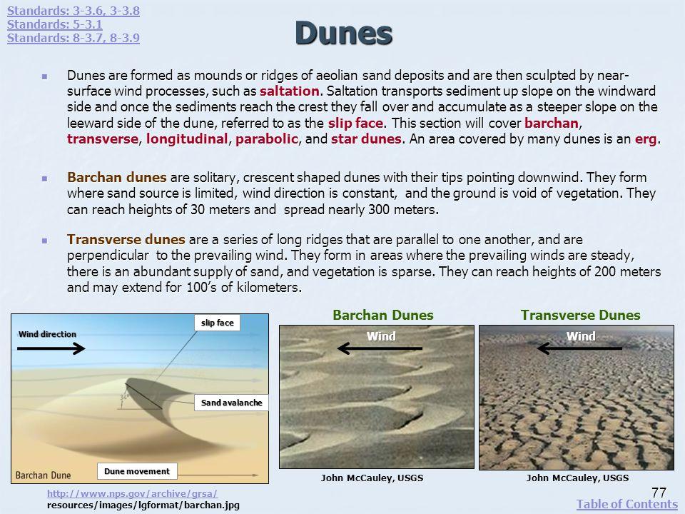 Standards: 3-3.6, 3-3.8 Standards: 5-3.1. Standards: 8-3.7, 8-3.9. Dunes.