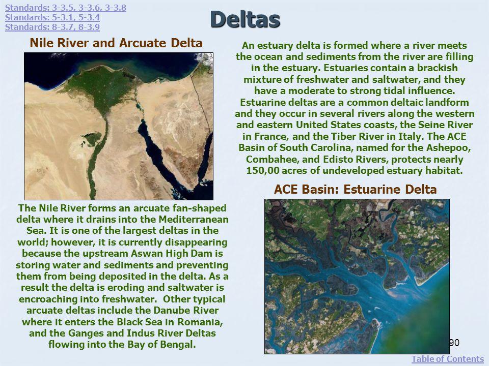 Deltas Nile River and Arcuate Delta ACE Basin: Estuarine Delta