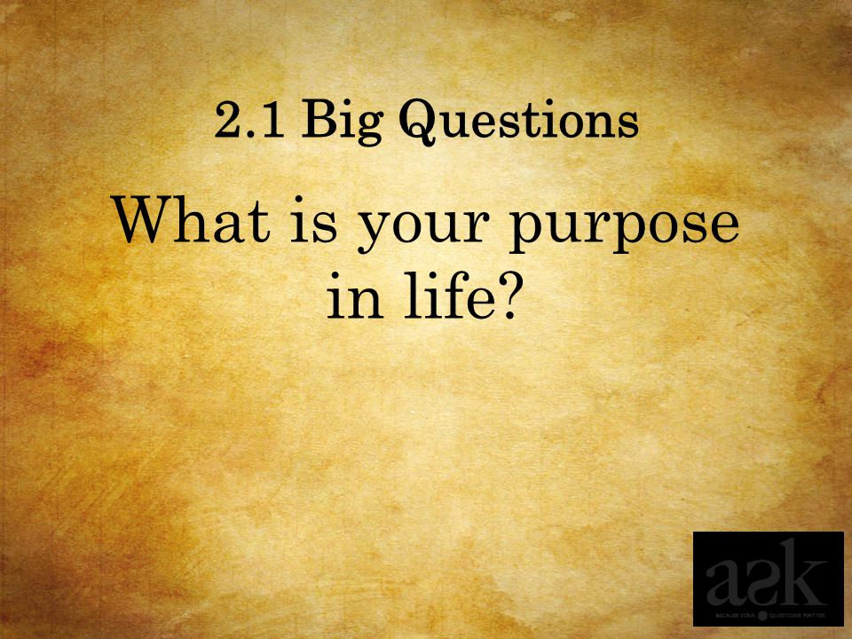 What is your purpose in life
