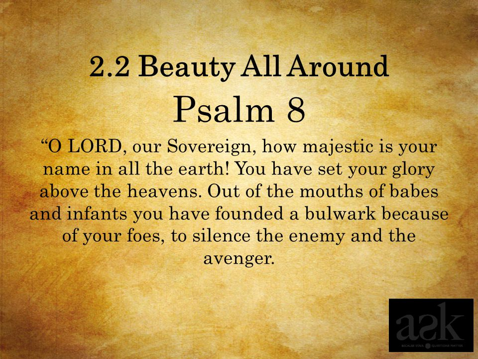 Psalm 8 2.2 Beauty All Around