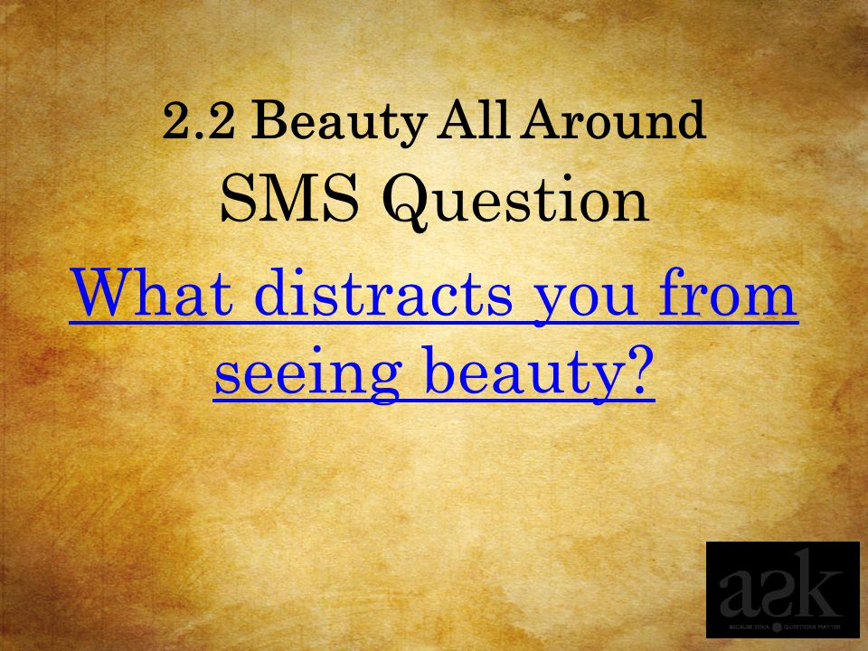 SMS Question What distracts you from seeing beauty