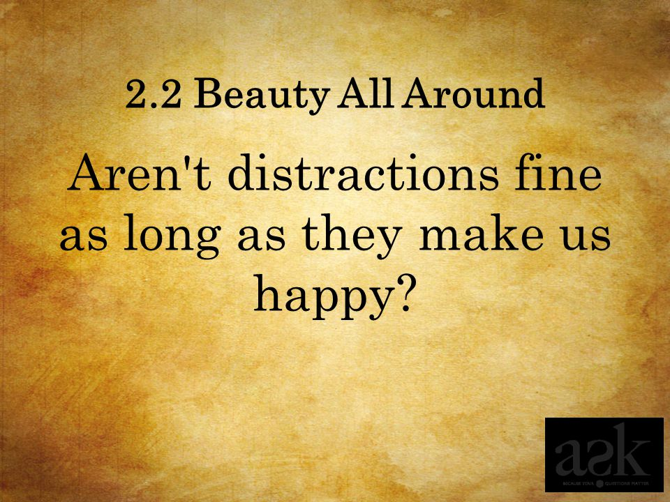 Aren t distractions fine as long as they make us happy
