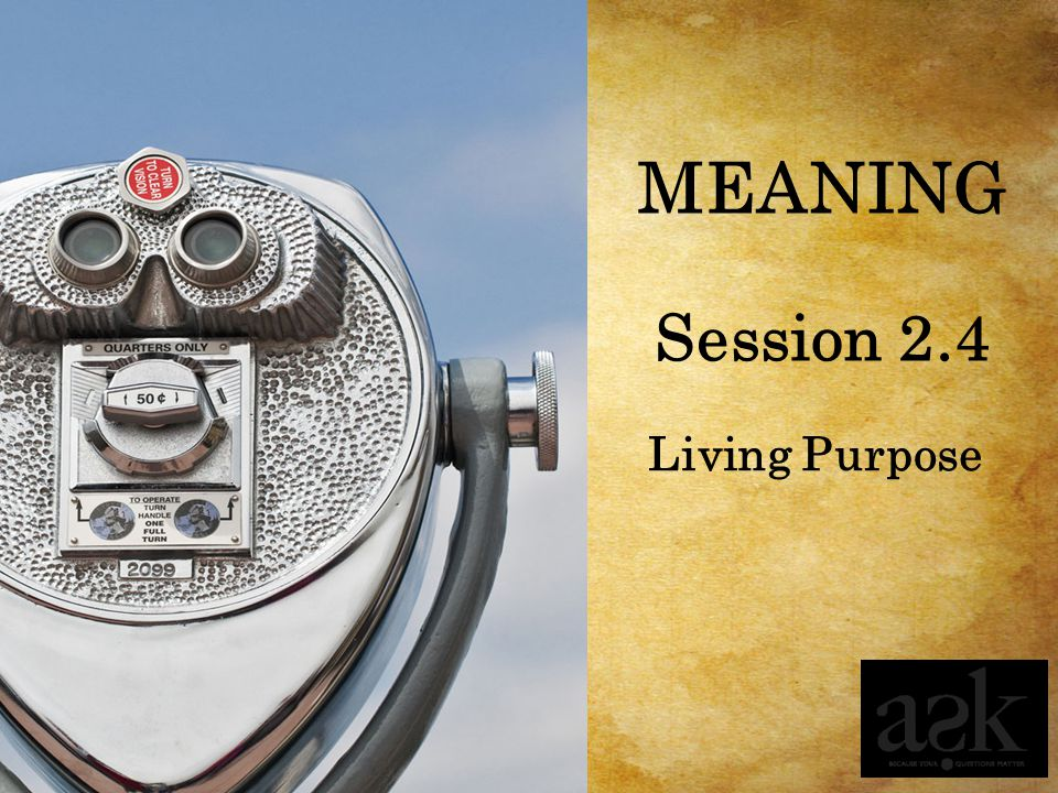 MEANING Session 2.4 Living Purpose