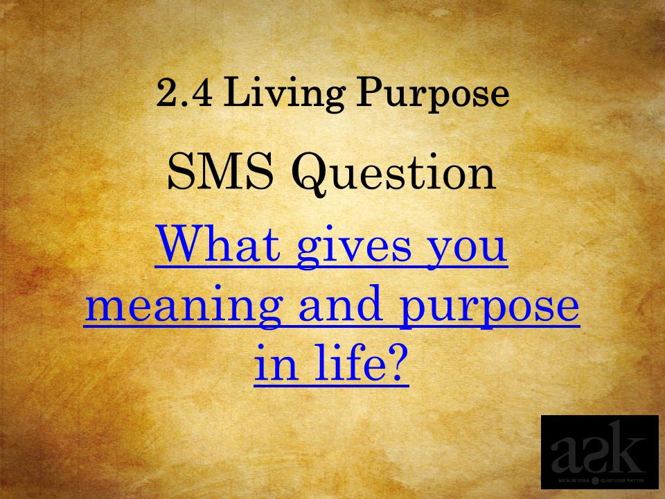 SMS Question What gives you meaning and purpose in life