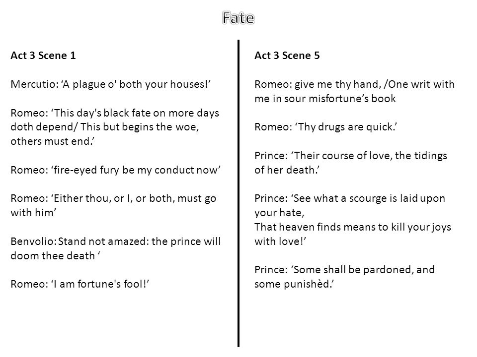 Fate Act 3 Scene 1 Mercutio: 'A plague o both your houses!'