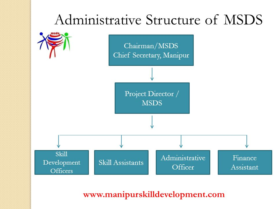 Administrative Structure of MSDS