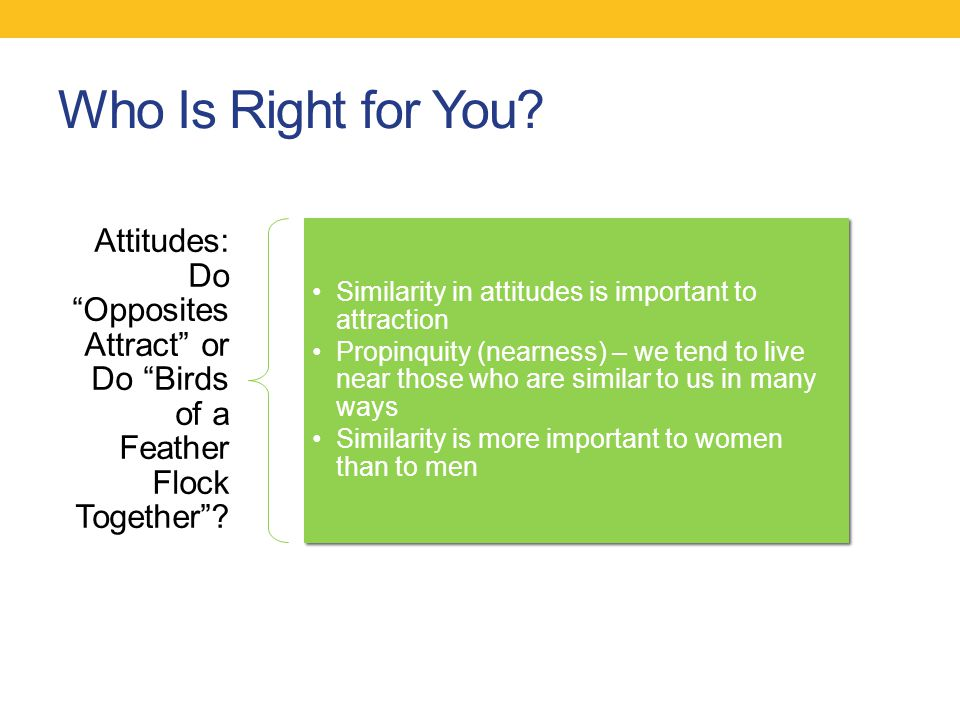 Who Is Right for You Attitudes: Do Opposites Attract or Do Birds of a Feather Flock Together