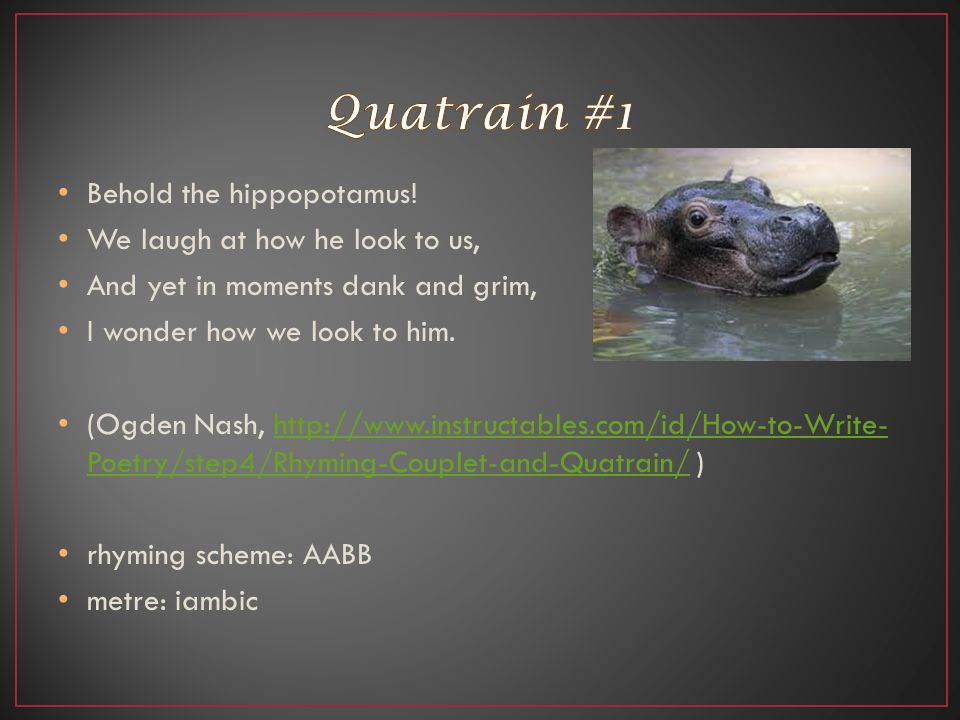 Quatrain #1 Behold the hippopotamus! We laugh at how he look to us,