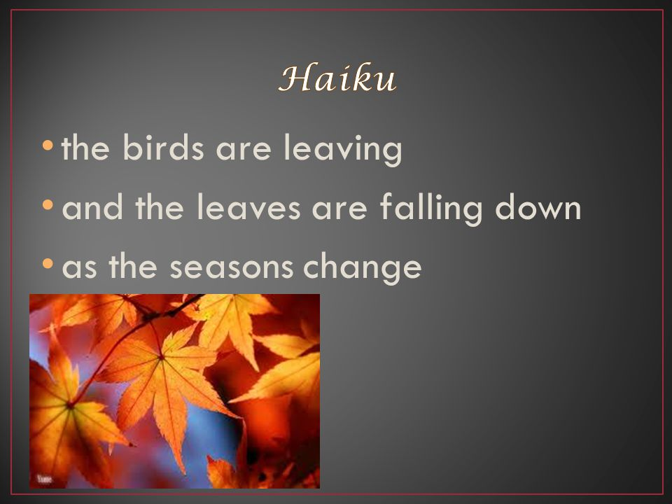 and the leaves are falling down as the seasons change