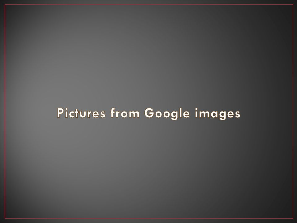 Pictures from Google images
