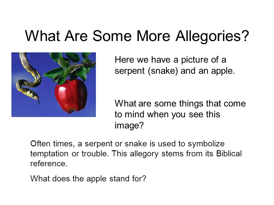 What Are Some More Allegories
