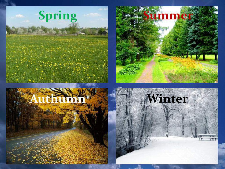 Spring Summer Authumn Winter