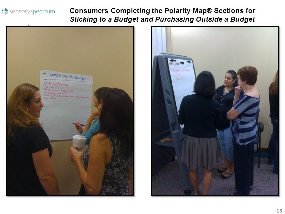Consumers Completing the Polarity Map® Sections for Sticking to a Budget and Purchasing Outside a Budget