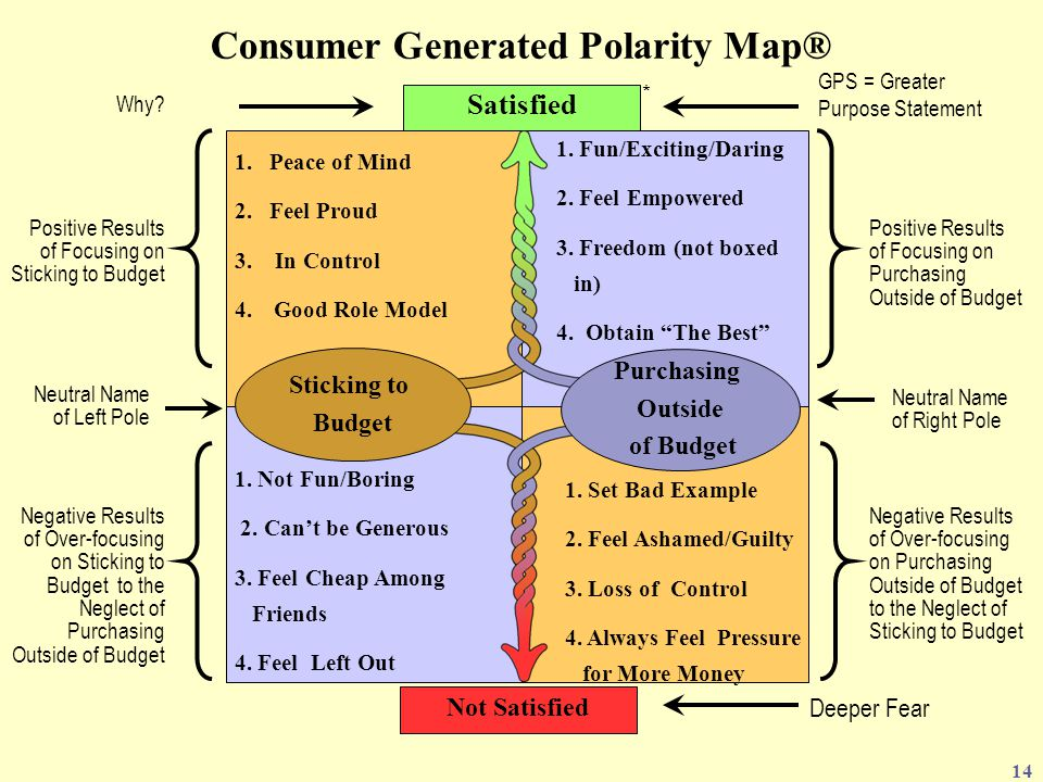 Consumer Generated Polarity Map®