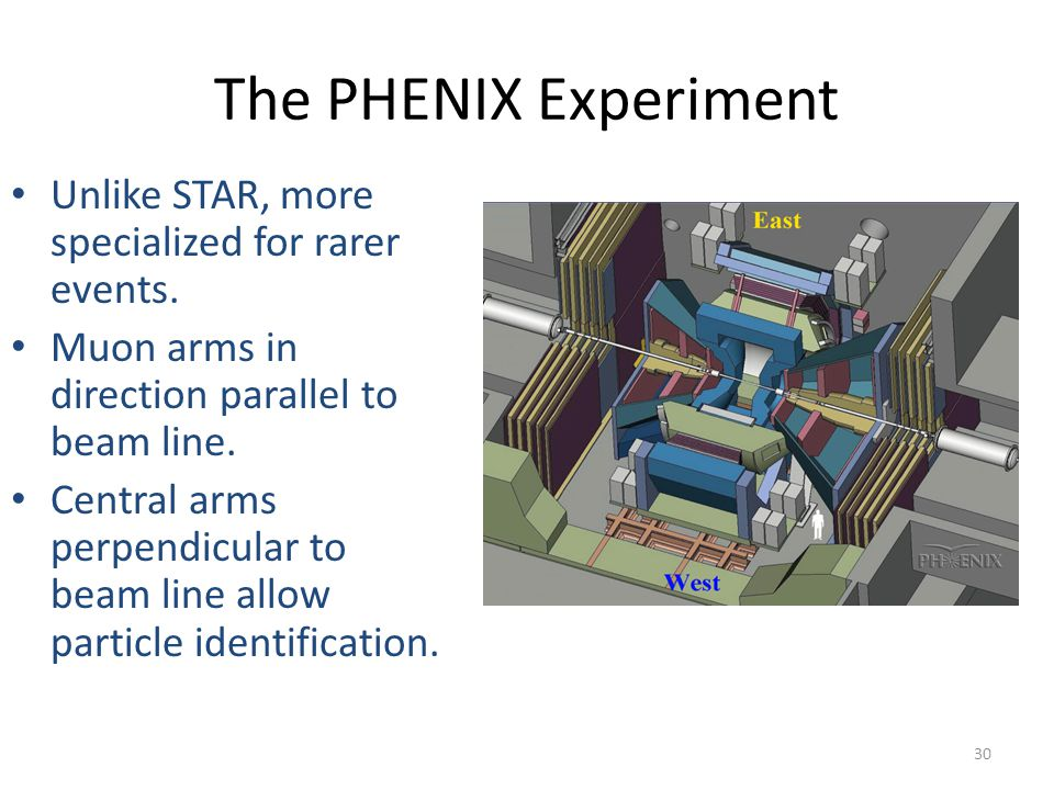 The PHENIX Experiment Unlike STAR, more specialized for rarer events.
