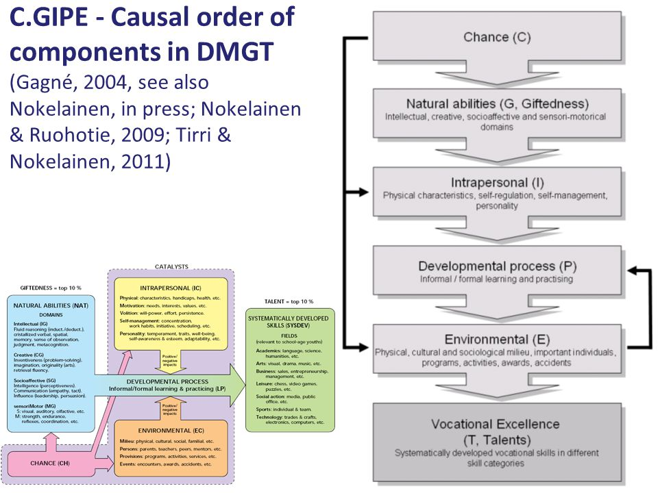 C.GIPE - Causal order of components in DMGT (Gagné, 2004, see also Nokelainen, in press; Nokelainen & Ruohotie, 2009; Tirri & Nokelainen, 2011)
