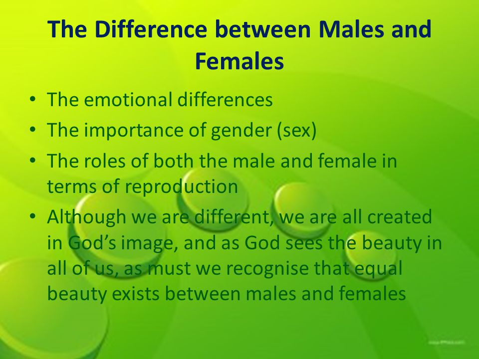 The Difference between Males and Females