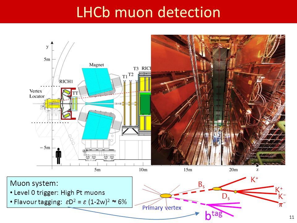  LHCb muon detection btag m Muon system: Bs