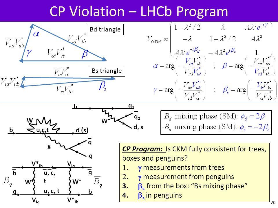 CP Violation – LHCb Program