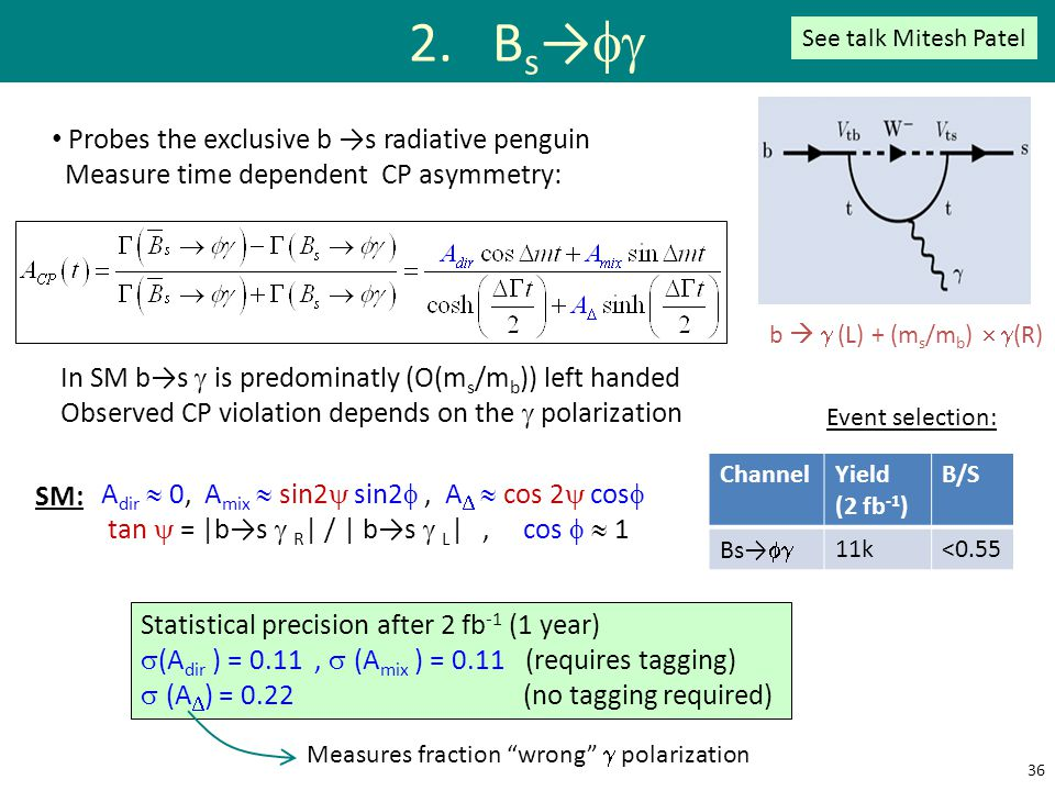 2. Bs→fg Probes the exclusive b →s radiative penguin