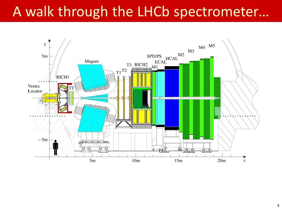 A walk through the LHCb spectrometer…