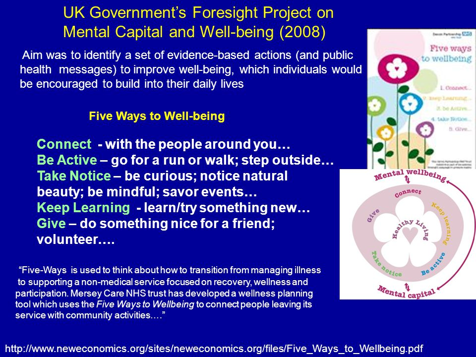 UK Government's Foresight Project on Mental Capital and Well-being (2008)